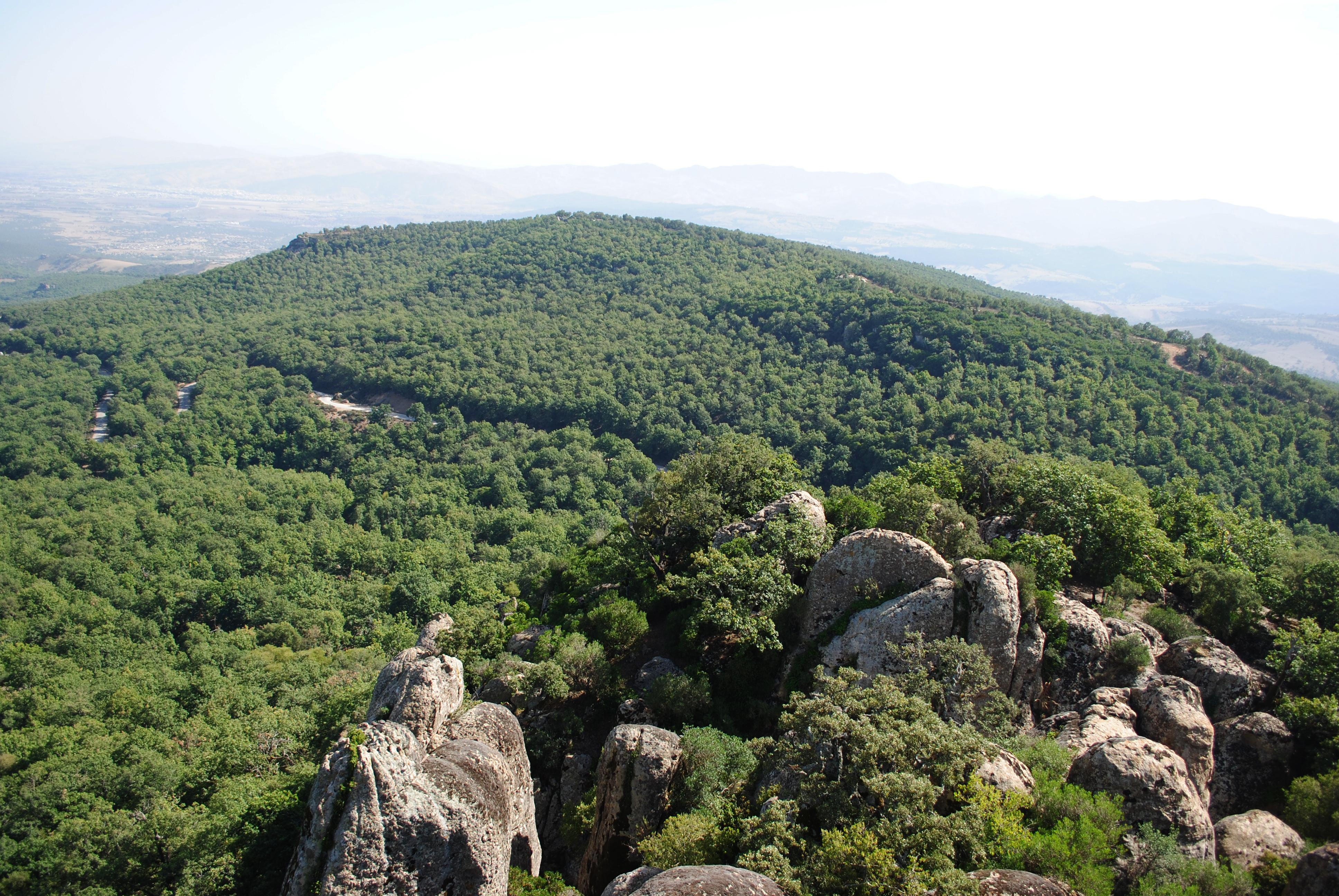 Parc Nacional de Feïdja