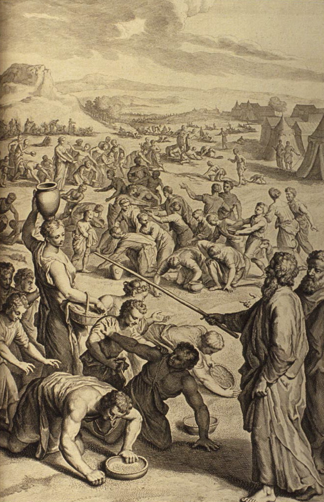 The Israelites Gather Manna in the Wilderness ...