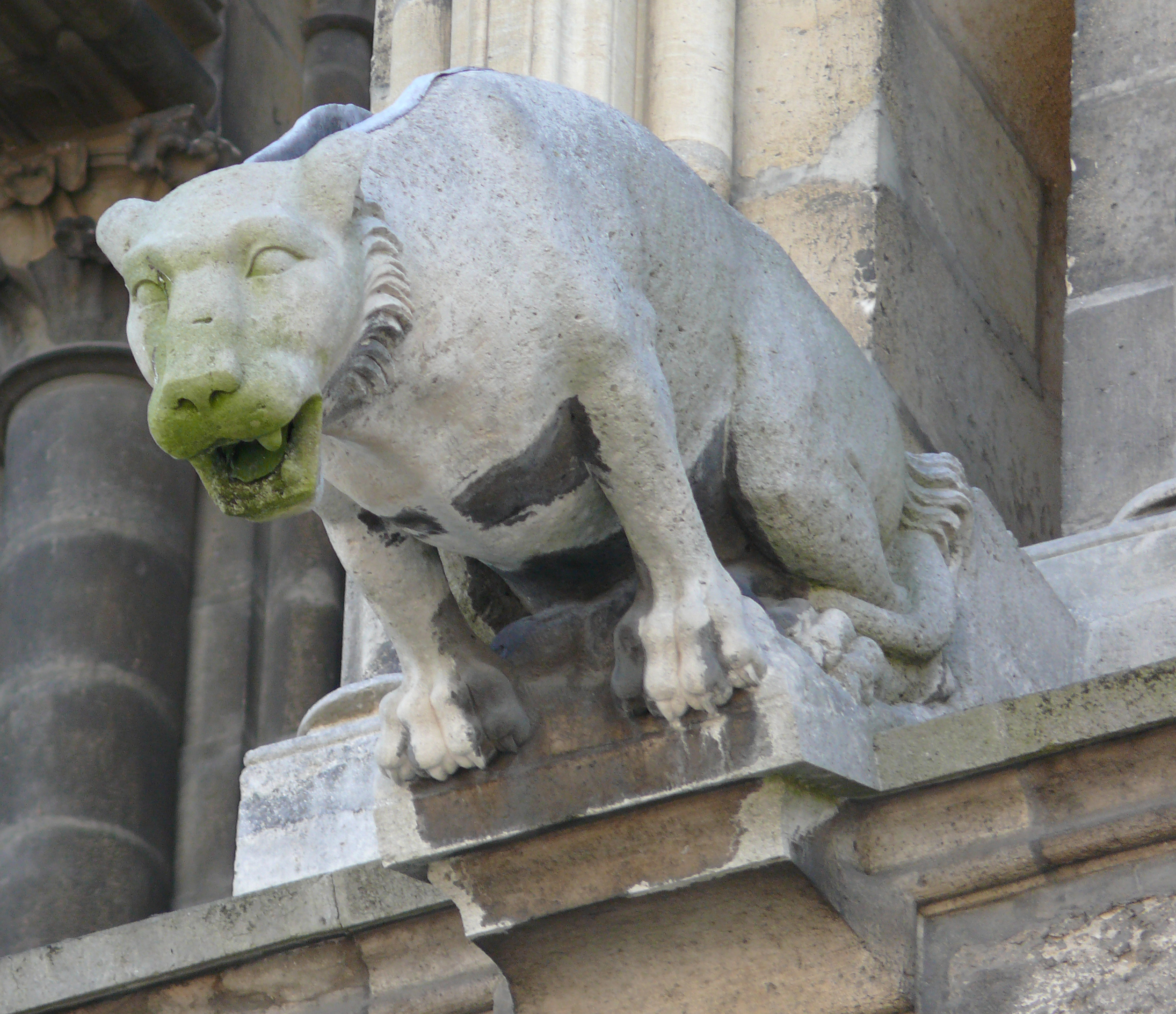 10 Fearsome Facts about Gargoyles