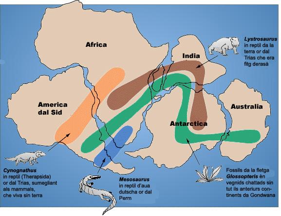 James l y el Reino de Valencia - Página 17 Gondwana_fossil_map_rg