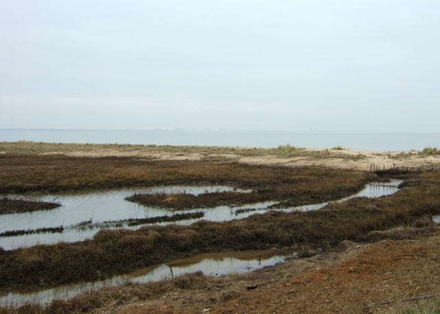 Hamford Water National Nature Reserve - geograph.org.uk - 1182562