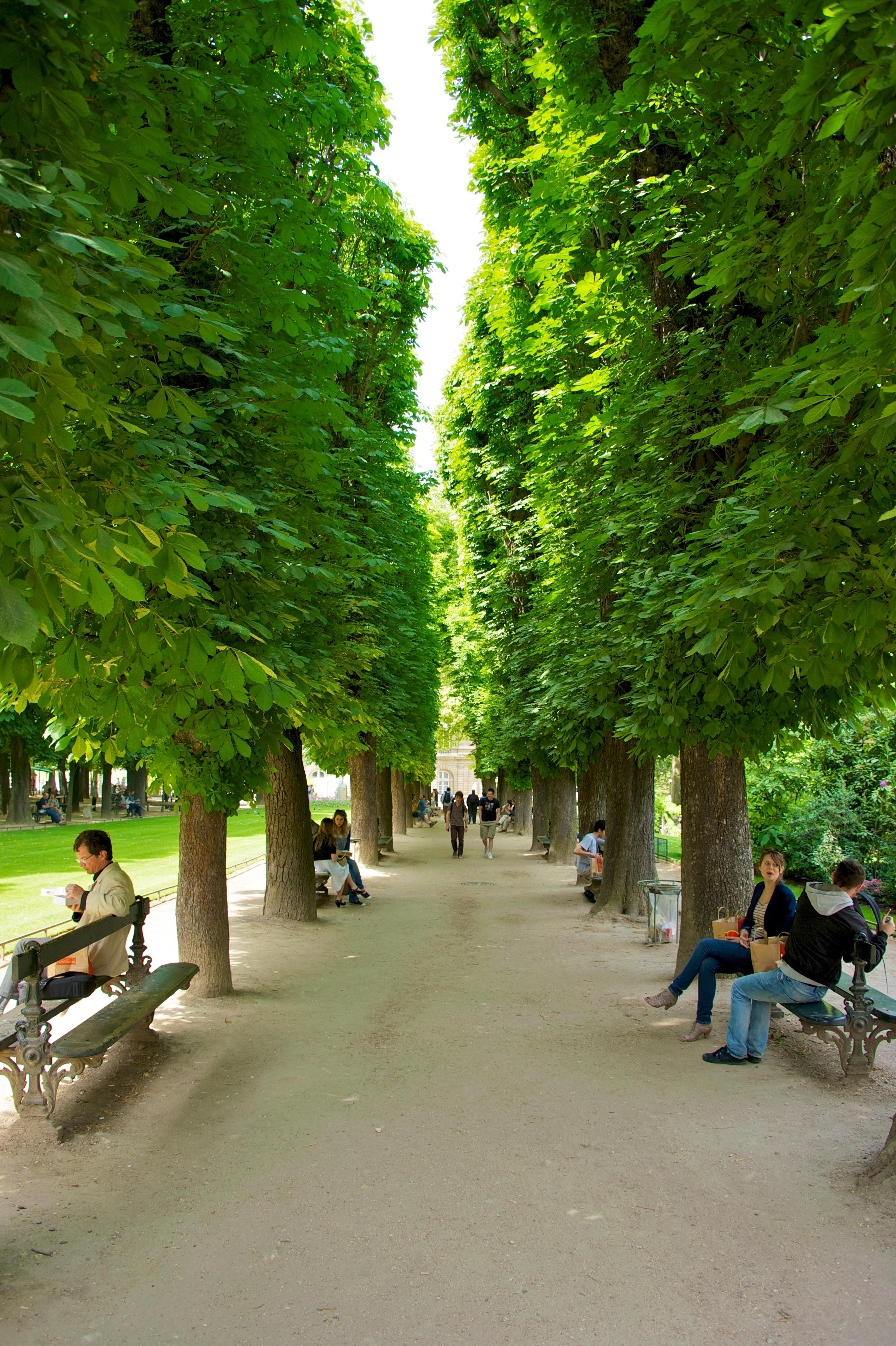 Fitxategi jardin du luxembourg 2 paris for Jardin jardin paris