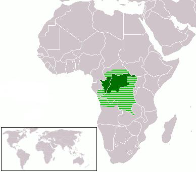 LanguageMap-Lingala-Larger Location.png