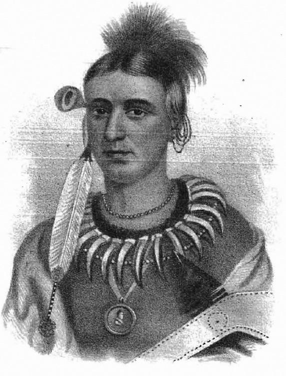 Mahaska Native American Leader Wikipedia
