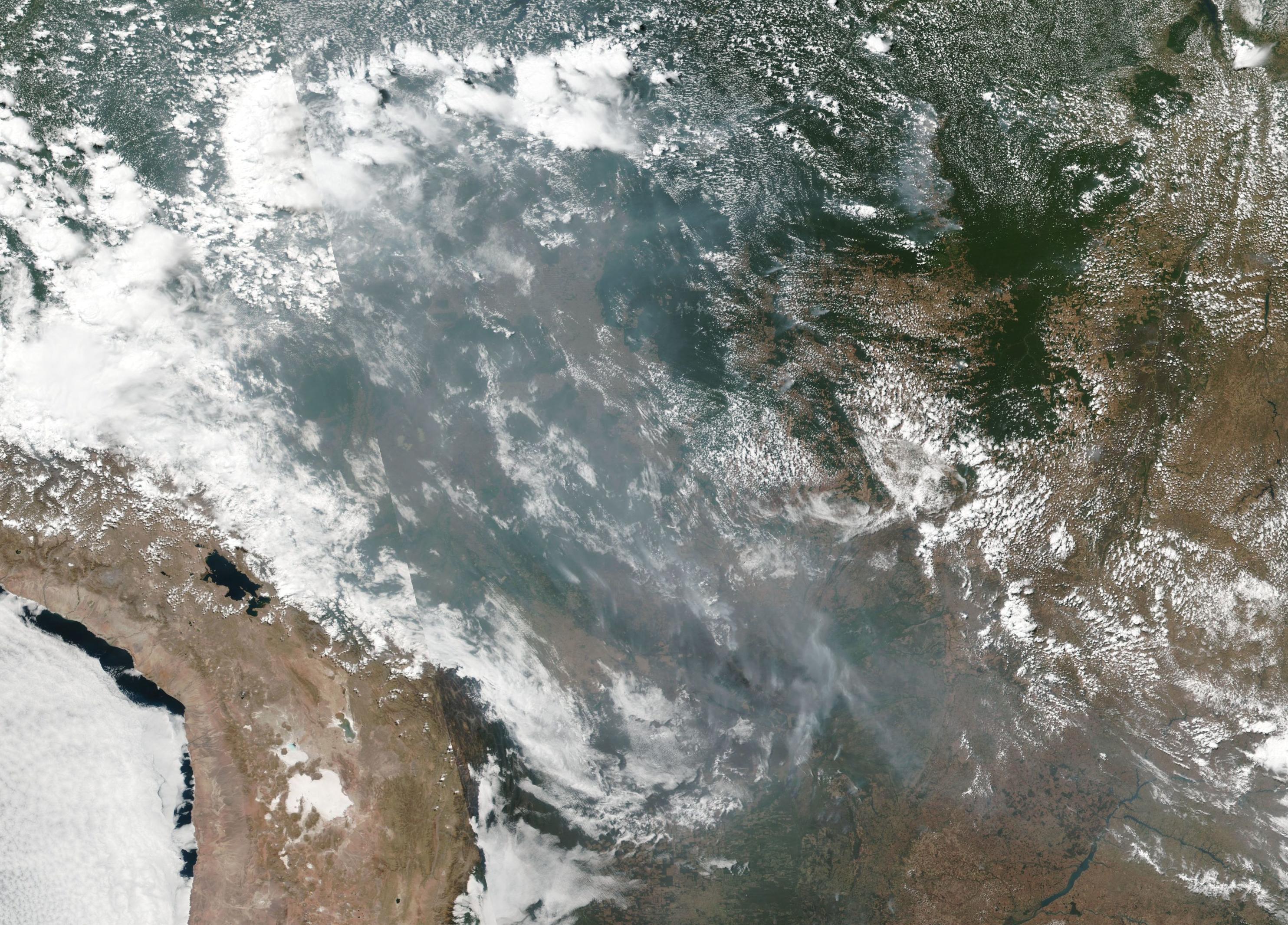 Waldbrande Im Amazonas Regenwald 2019 Wikipedia