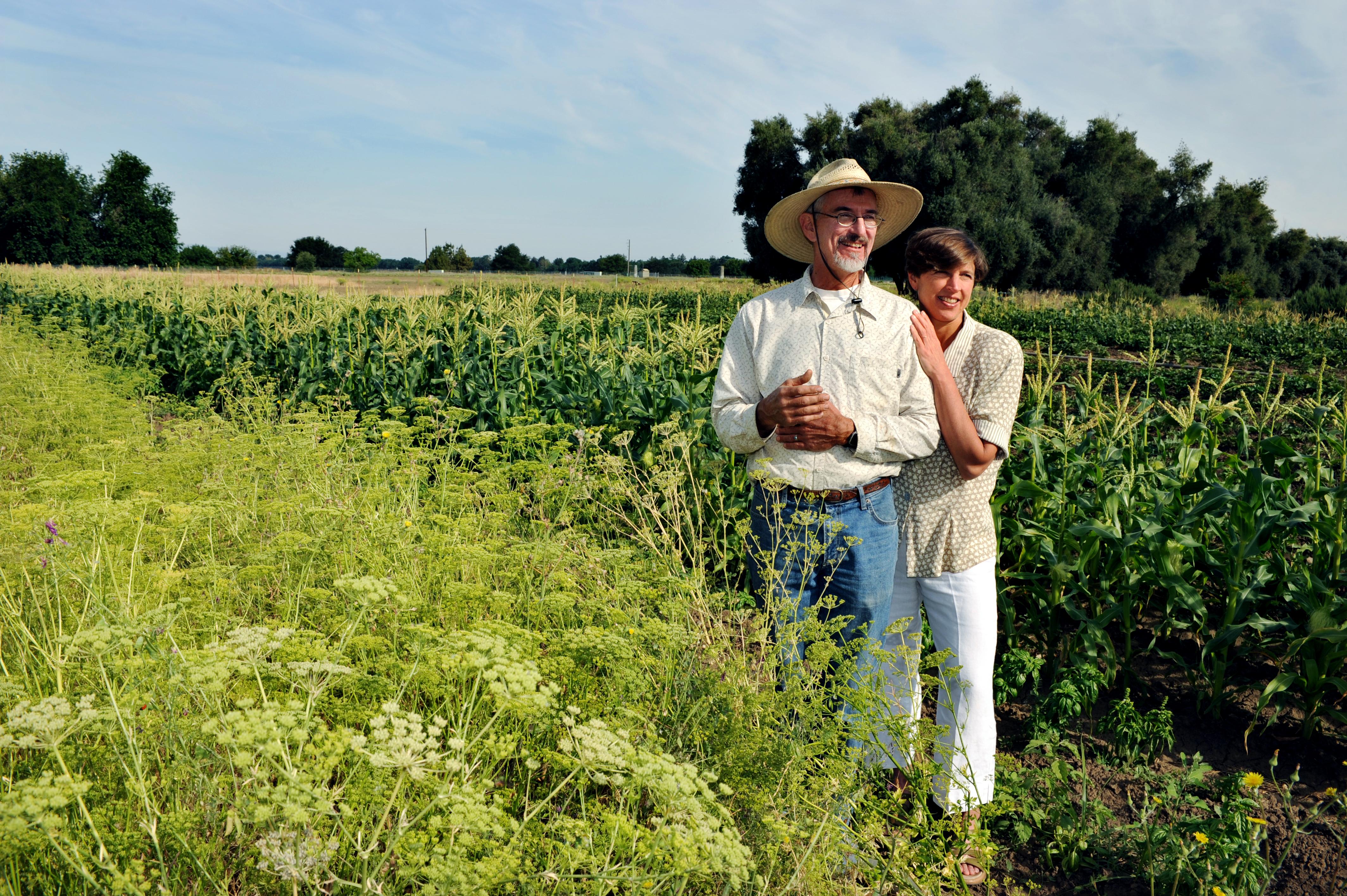 Single Farmers Dating