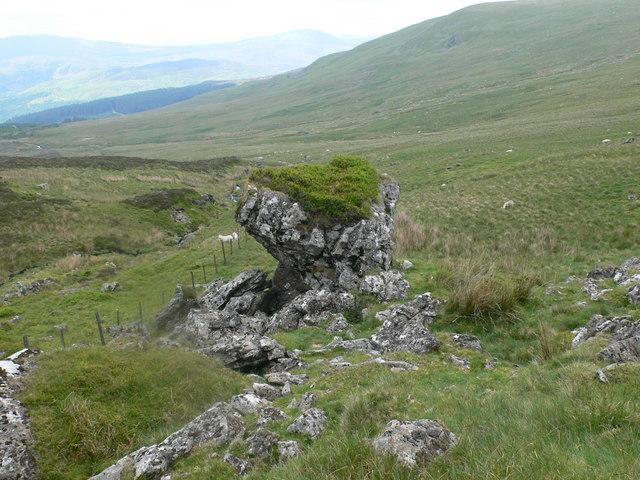 File:Rock garden - geograph.org.uk - 459941.jpg