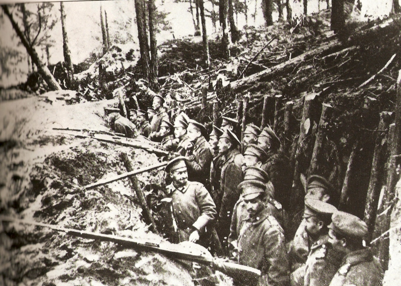 a Russian forest trench
