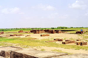 Archaeological site of Lothal.