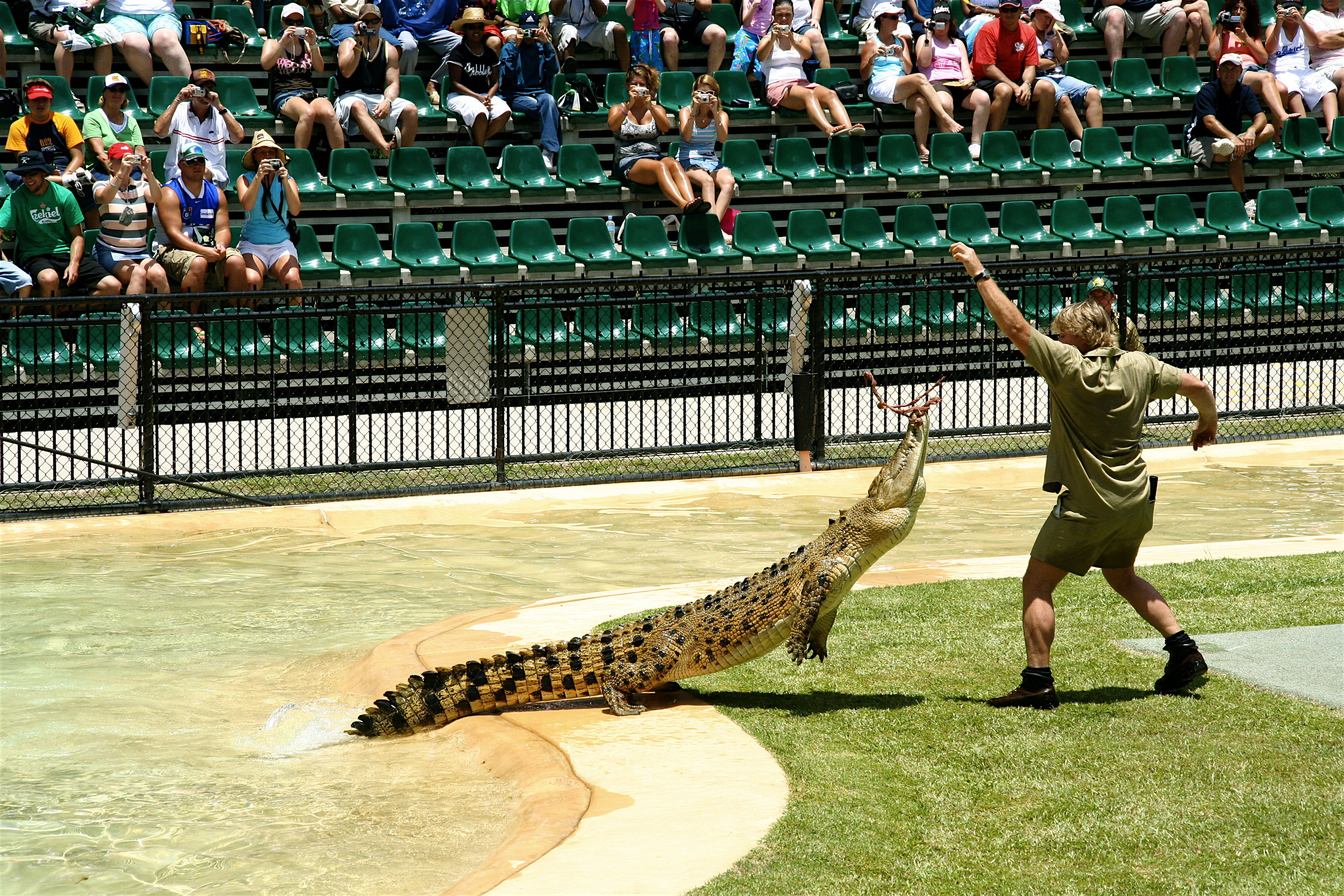 Steve Irwin at his Australia Zoo