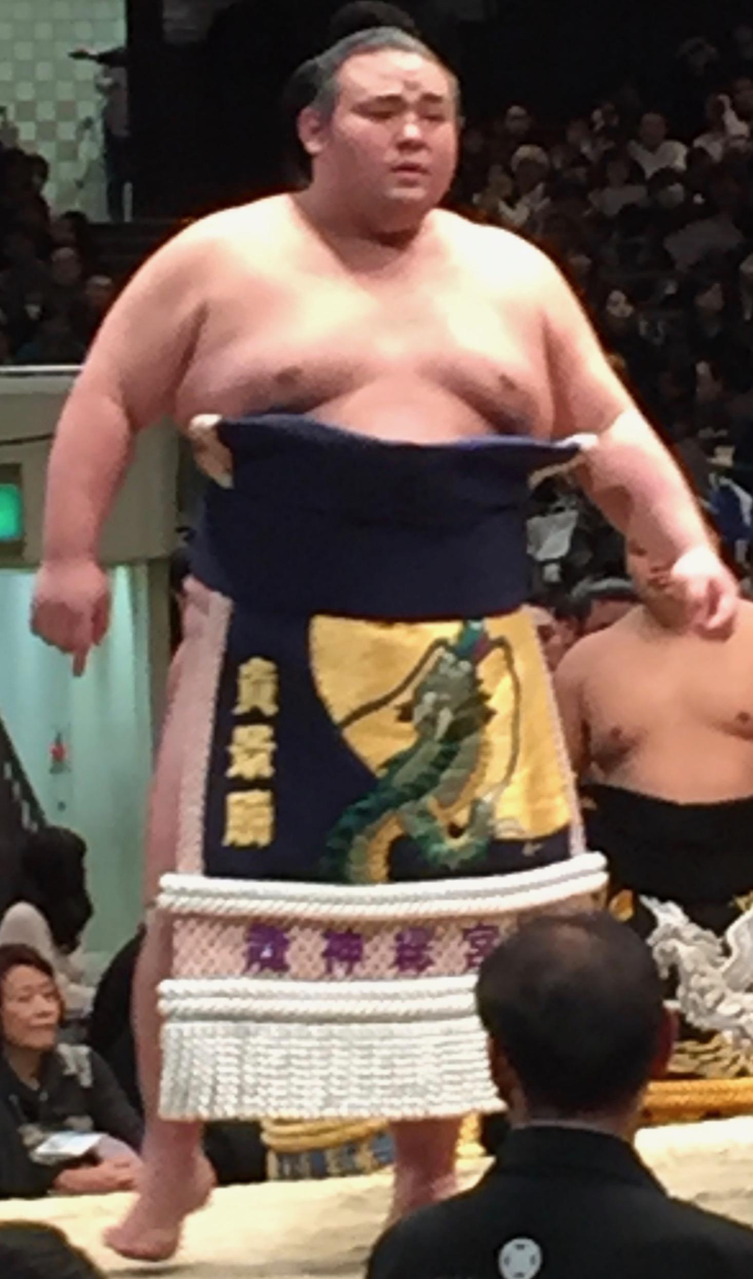 朝 の 山 今日 の 相撲 の 結果