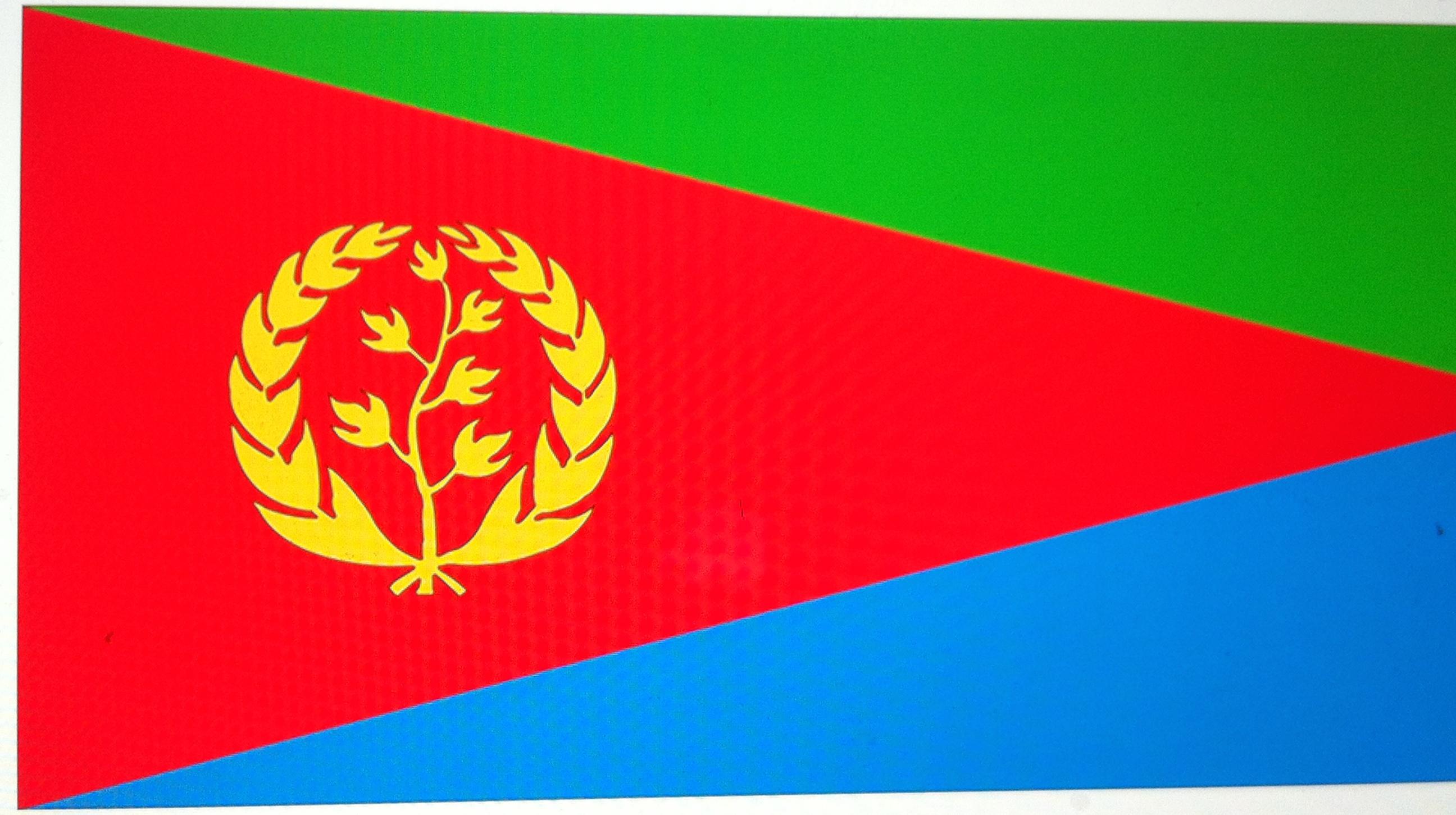 File:The Official Eritrean Flag..jpg - Wikimedia Commons