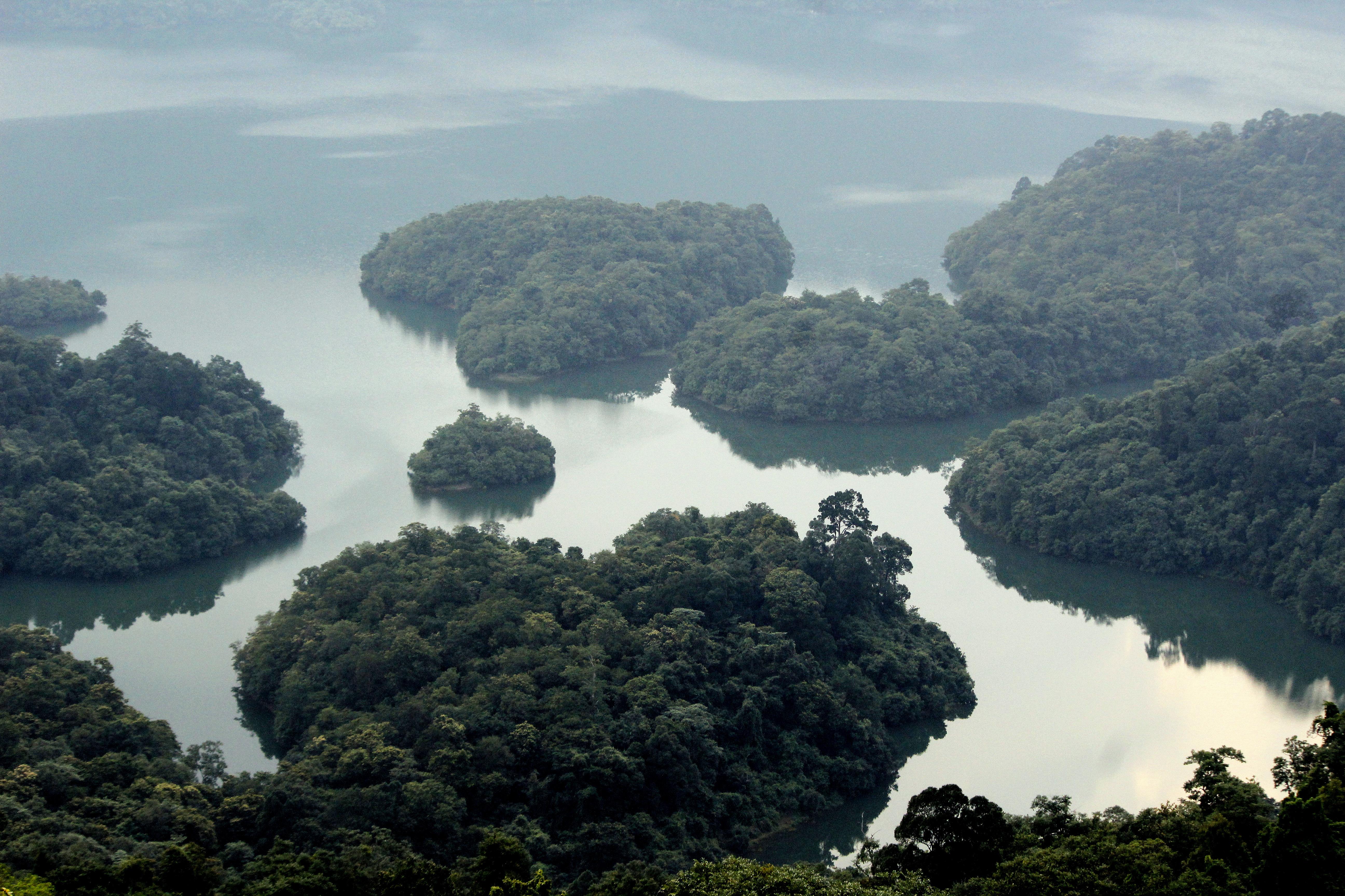 Thenmala_reservoir