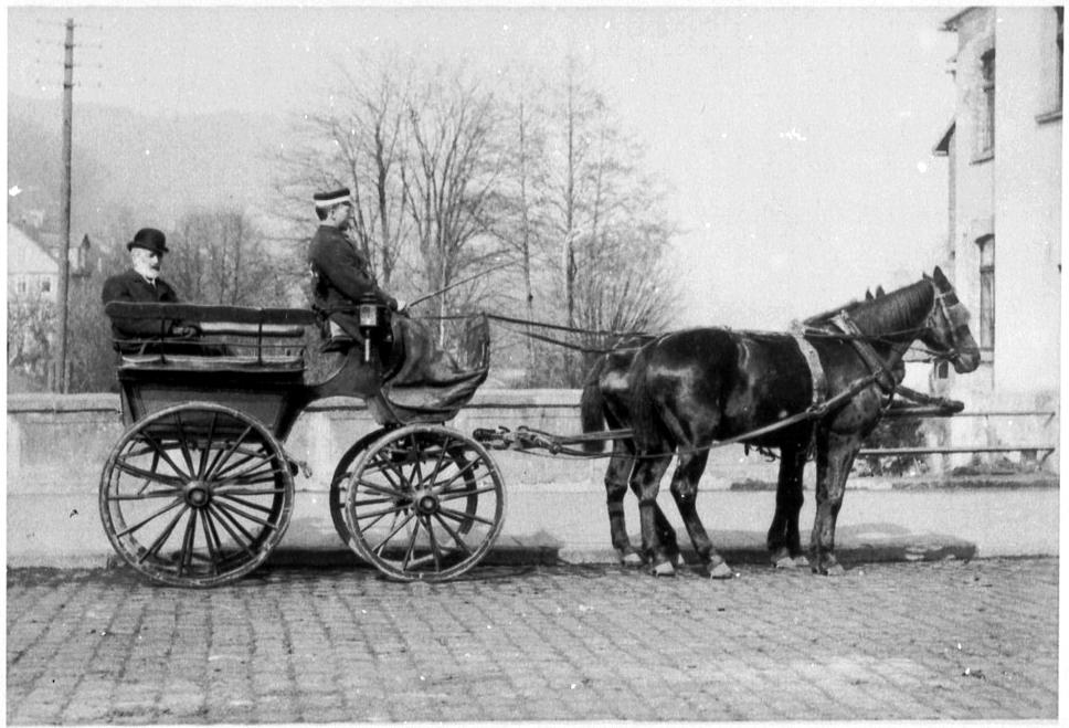 Pferdekutsche Fahrsport