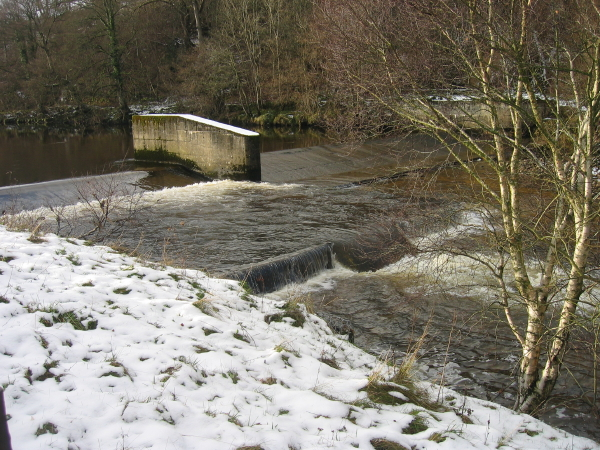 Weir on the River South Tyne at Featherstone - geograph.org.uk - 1636417