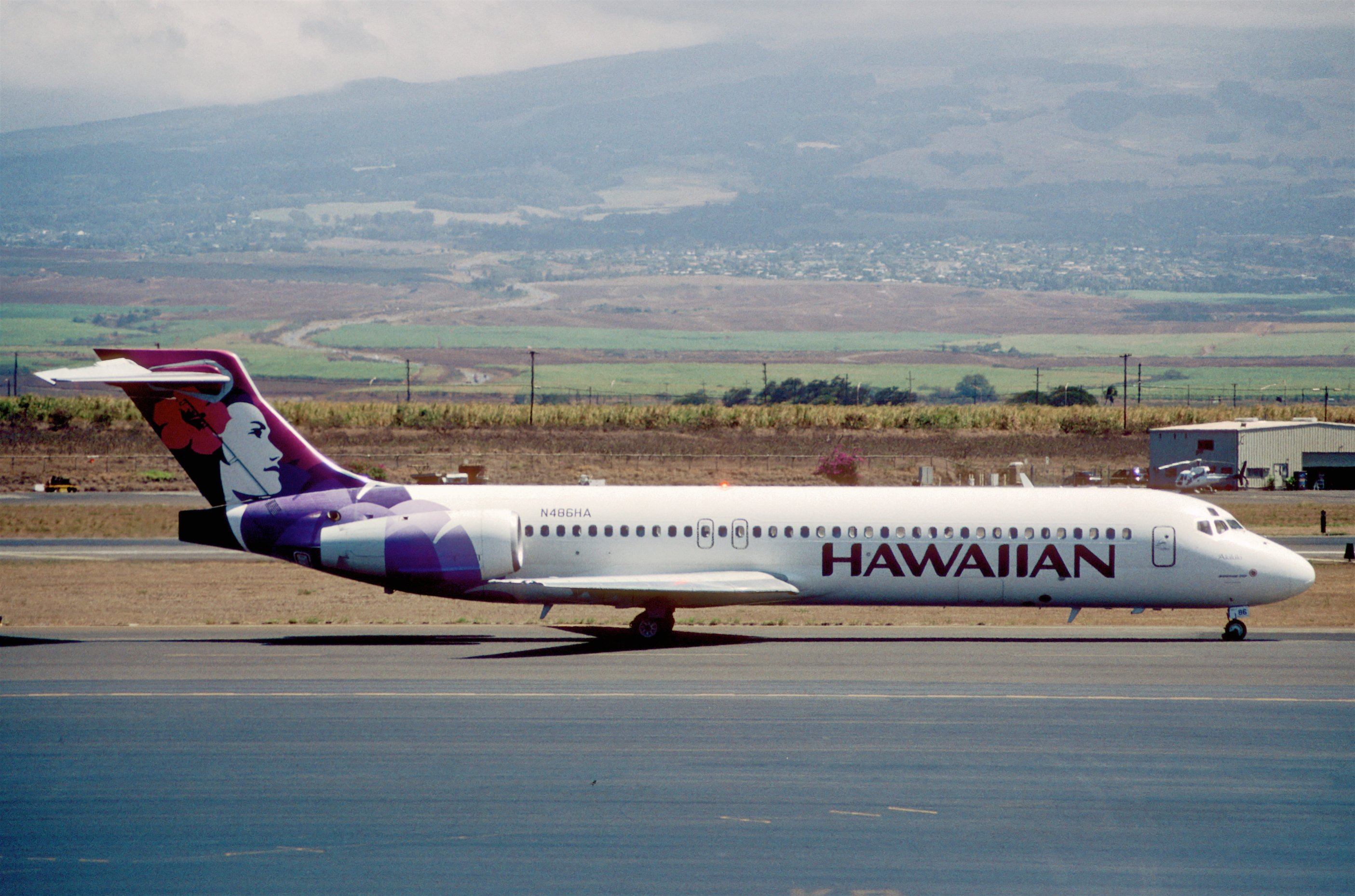 hawaiian airlines how to add baggage