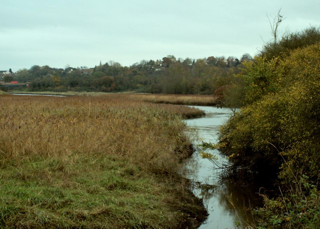 A view of the river Chelmer by Beeleigh Abbey - geograph.org.uk - 283810