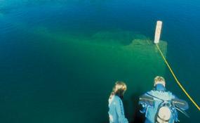 Shipwreck Off Of Patients Island Rhode Island