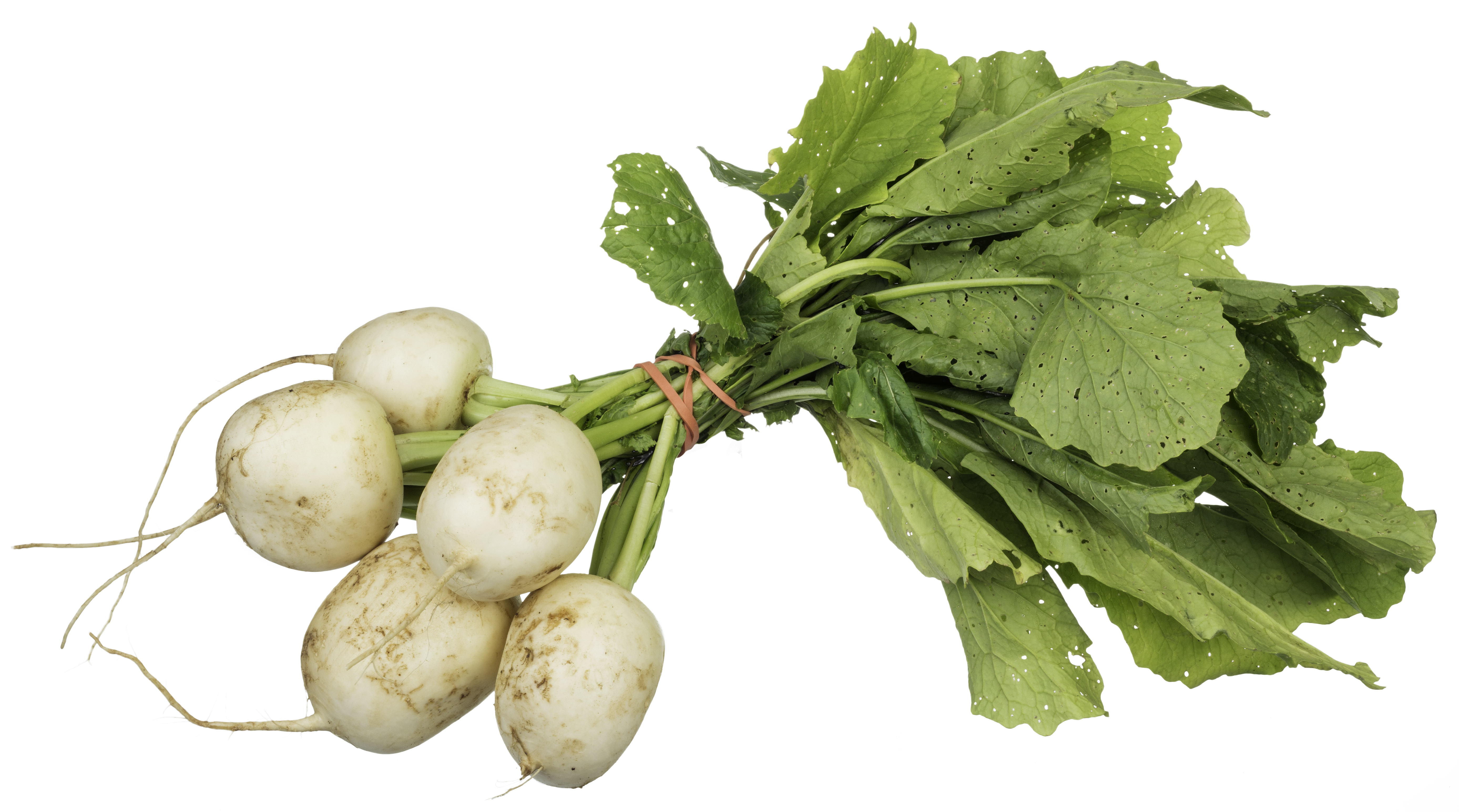 Benefits of turnips