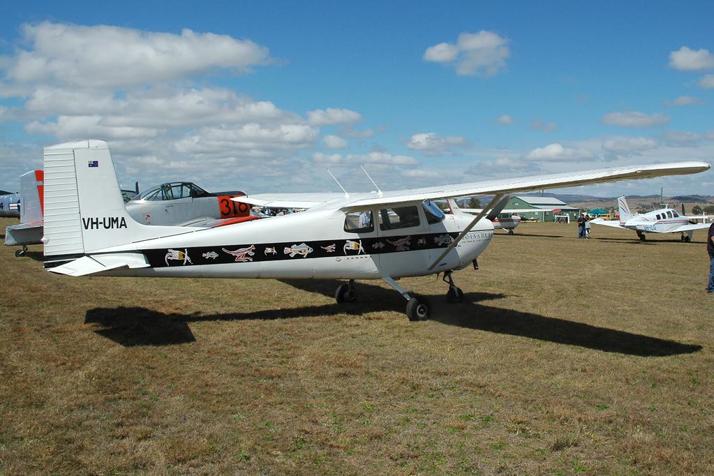 File:Cessna 175 (5723622926) jpg - Wikimedia Commons
