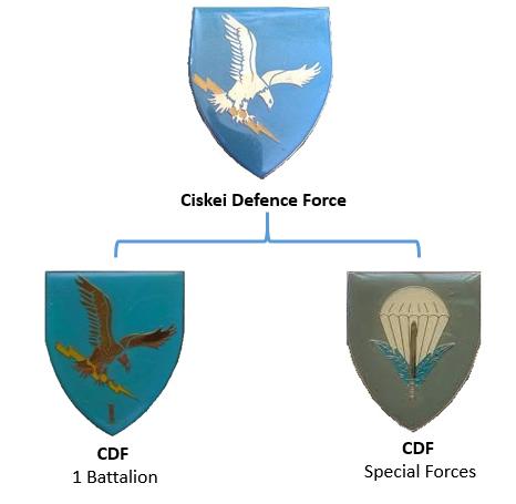 Ciskei Defence Force insignia