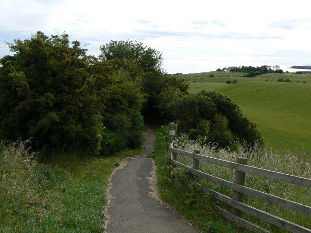 Creel Road - geograph.org.uk - 1379659