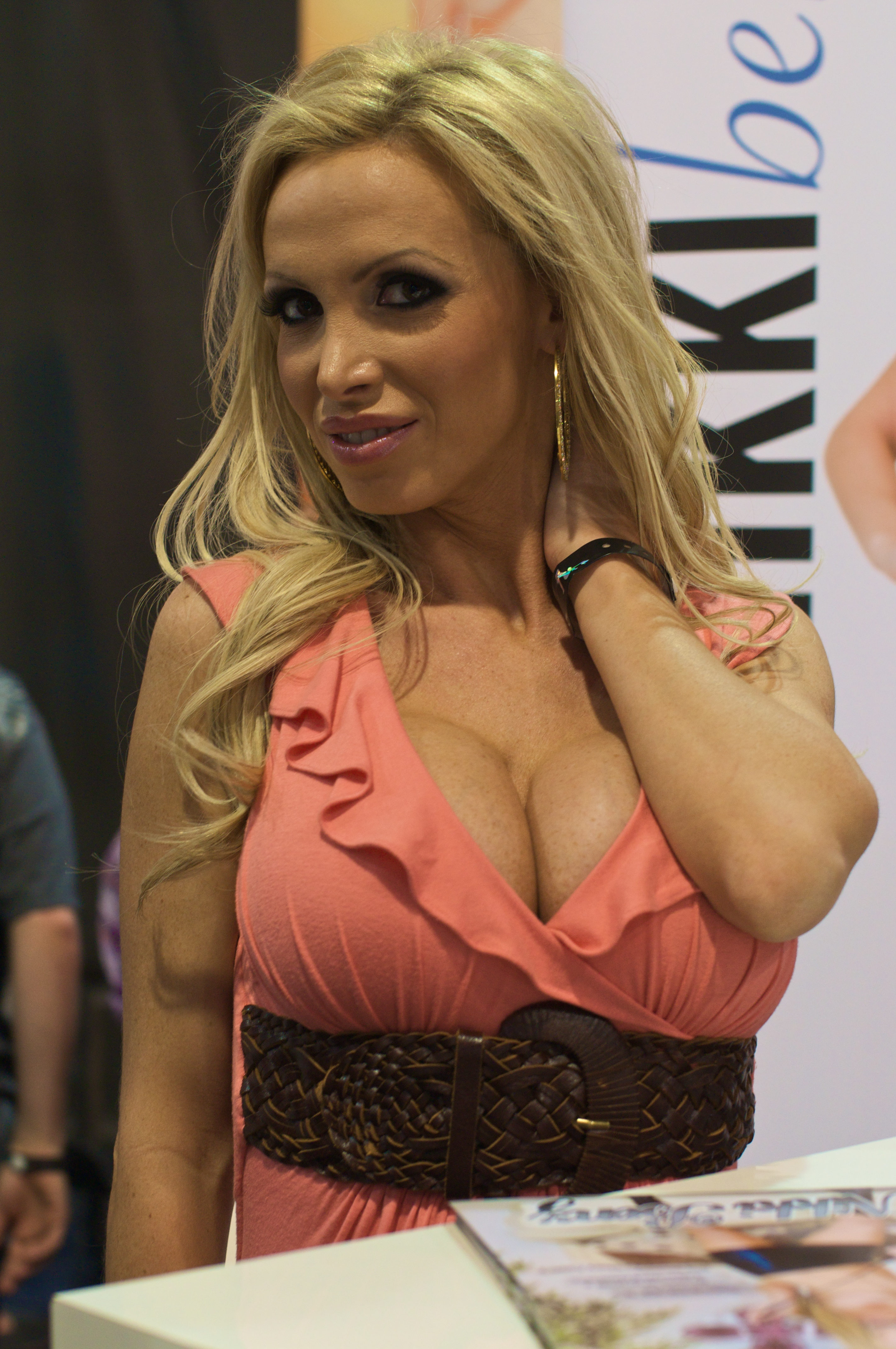 2010 avn adult entertainment expo