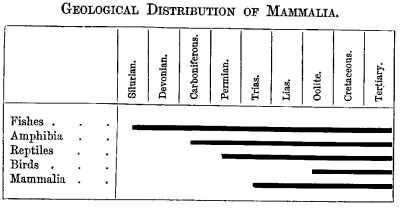 GEOLOGICAL DISTRIBUTION OF MAMMALIA.