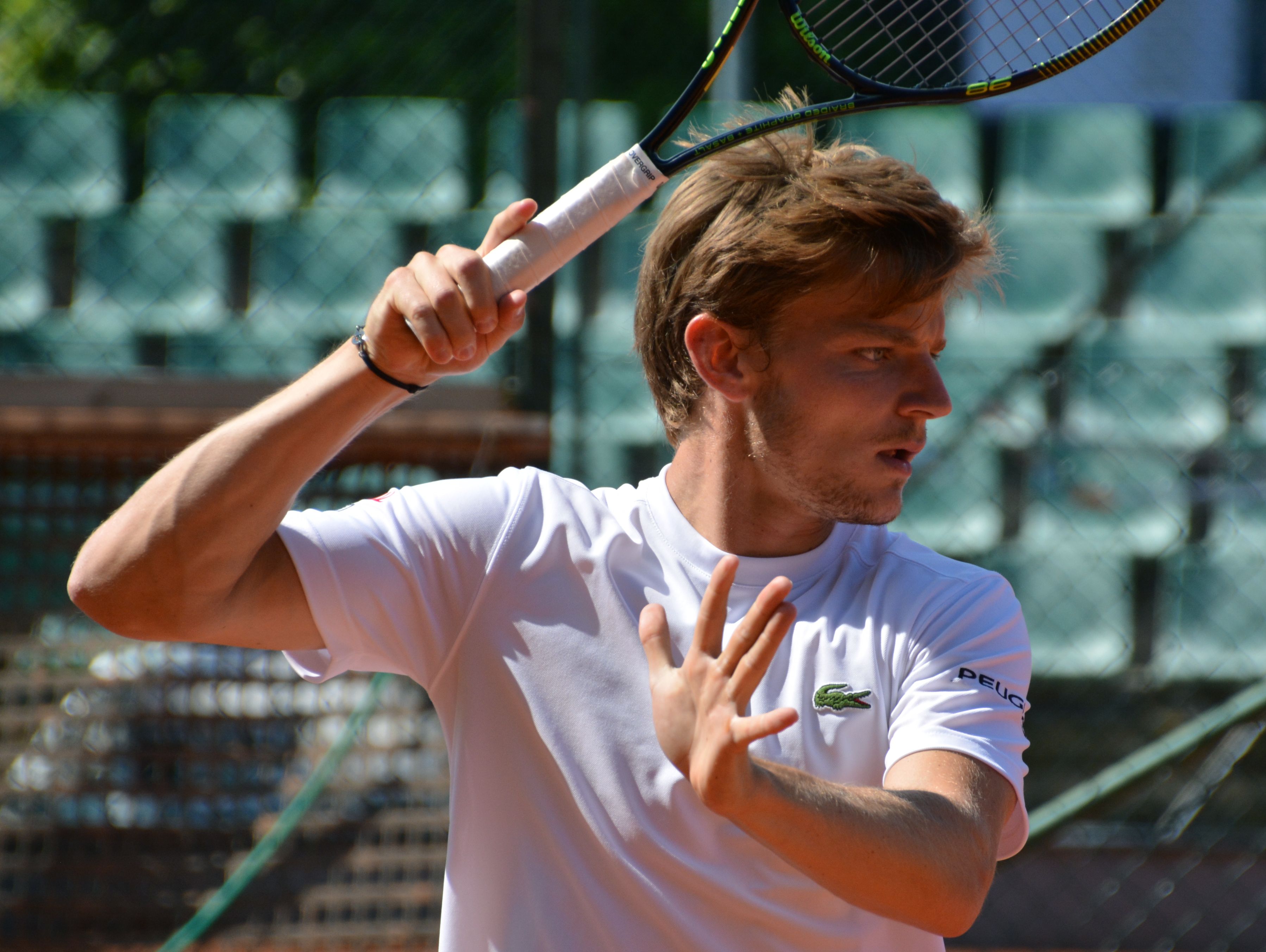 Image result for david goffin