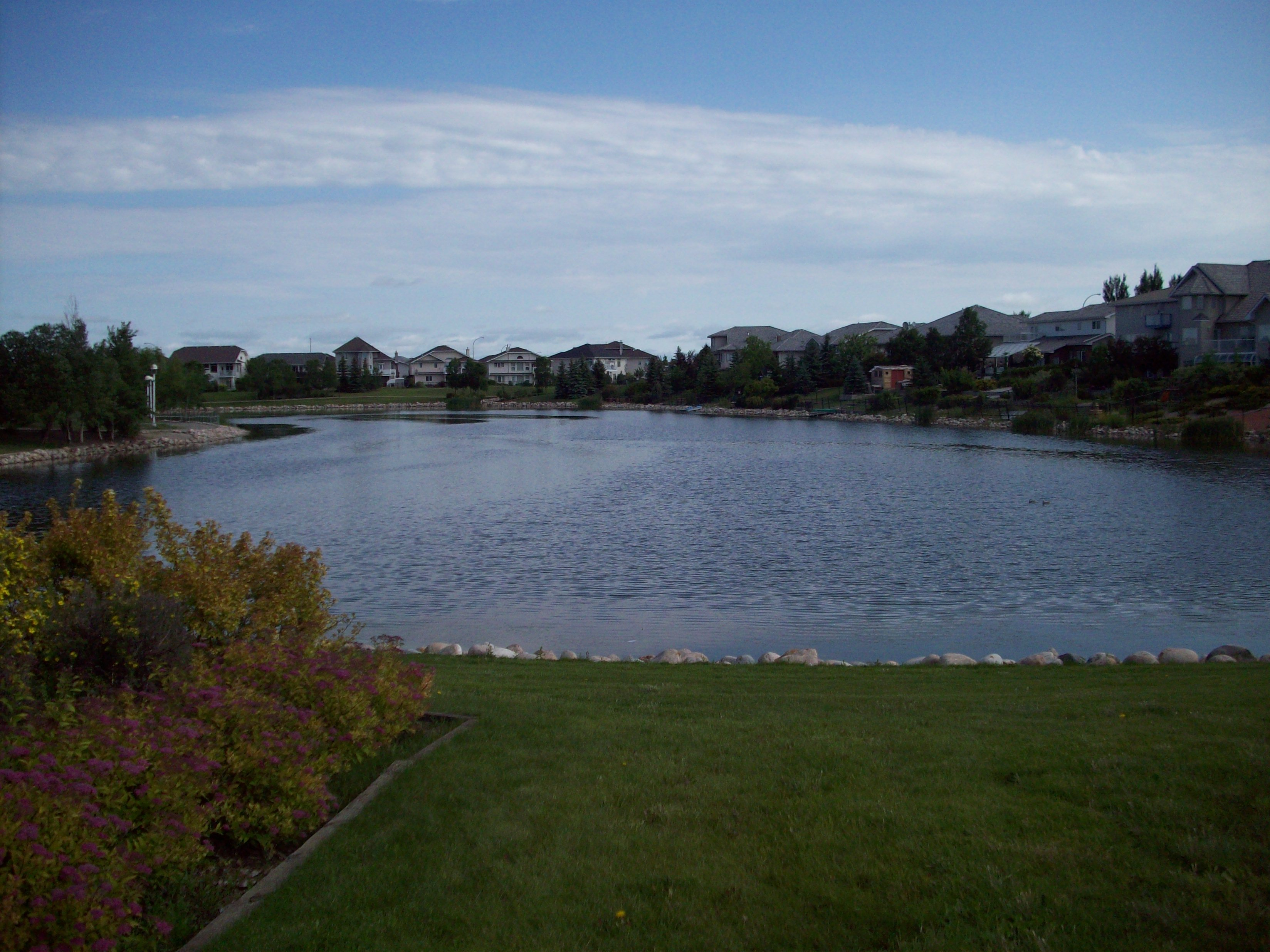File Decorative Pond In East End Residential Neighbourhood