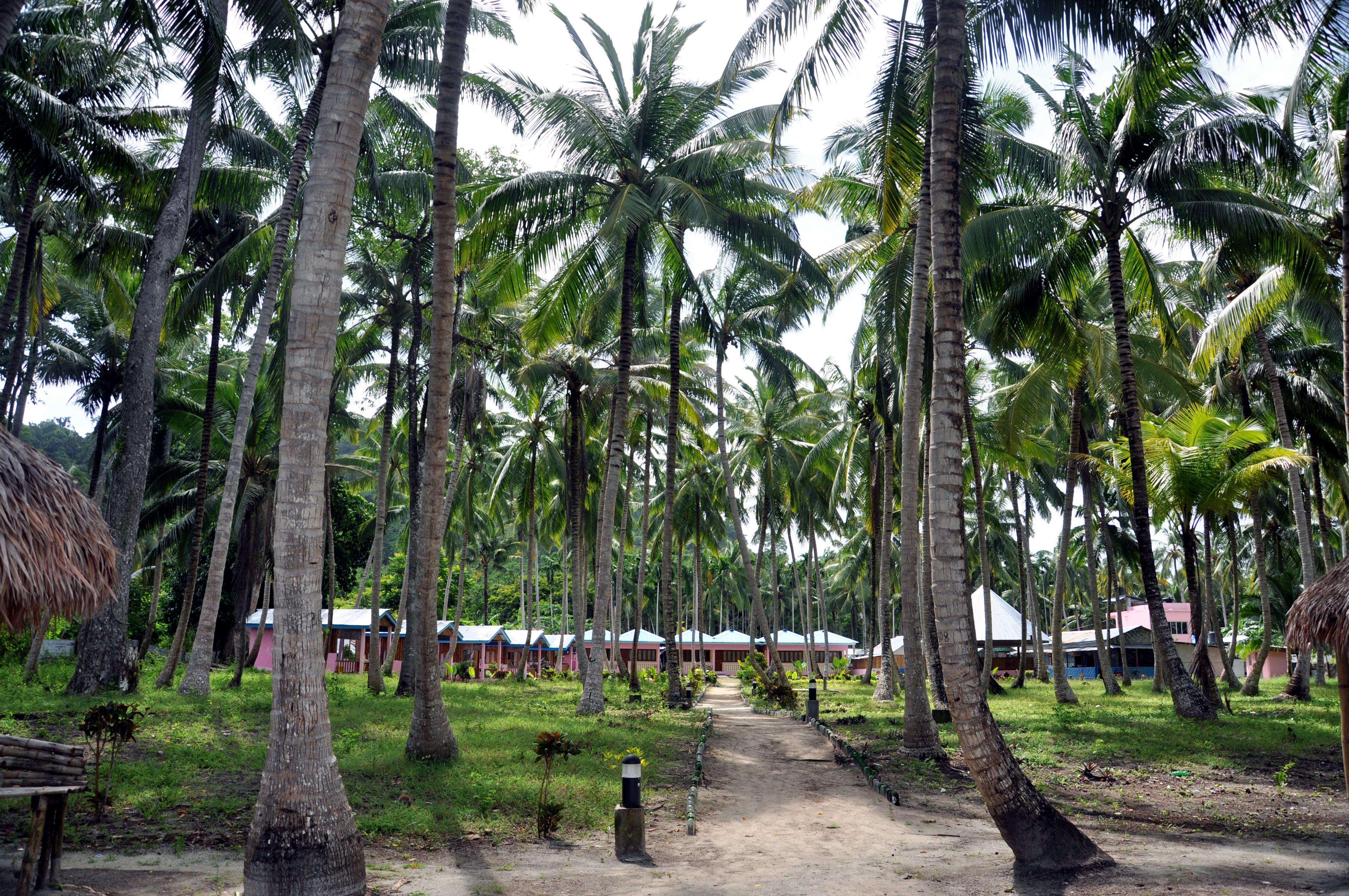 Beach resort in Andaman