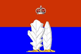 Флаг города Всеволожска