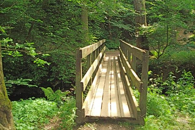Footbridge across the Dean Burn - geograph.org.uk - 1398777