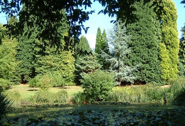 Furzey Gardens - geograph.org.uk - 332580