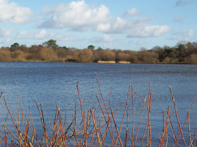 Heath Pond, Petersfield - geograph.org.uk - 317846
