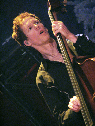List of double bassists in popular music