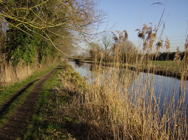 Kennet and Avon Canal near Thatcham - geograph.org.uk - 333249