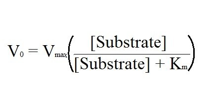 enzyme substrate complex equation