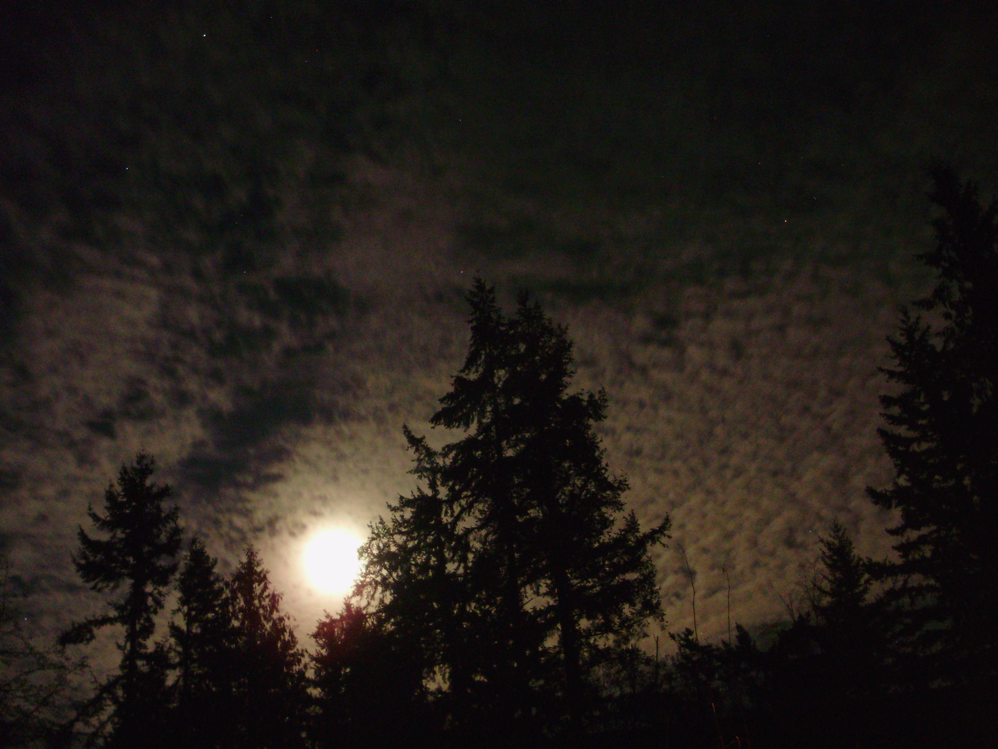 Nighttime_cirrocumulus