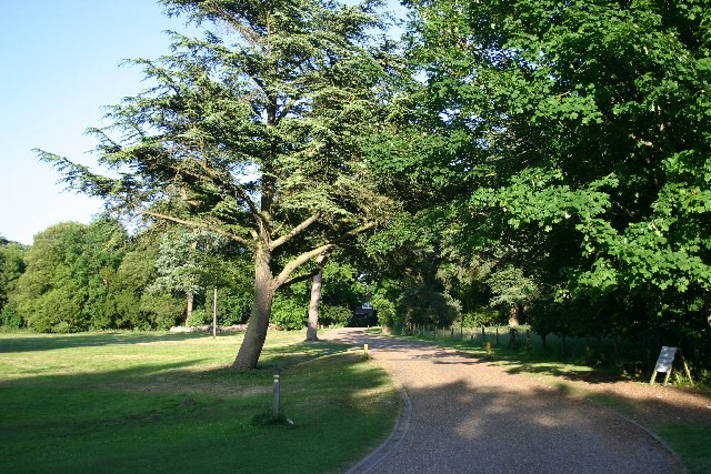 Nowton Park - geograph.org.uk - 21945