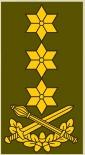 OF-8_generolas_leitenantas_SP.jpg