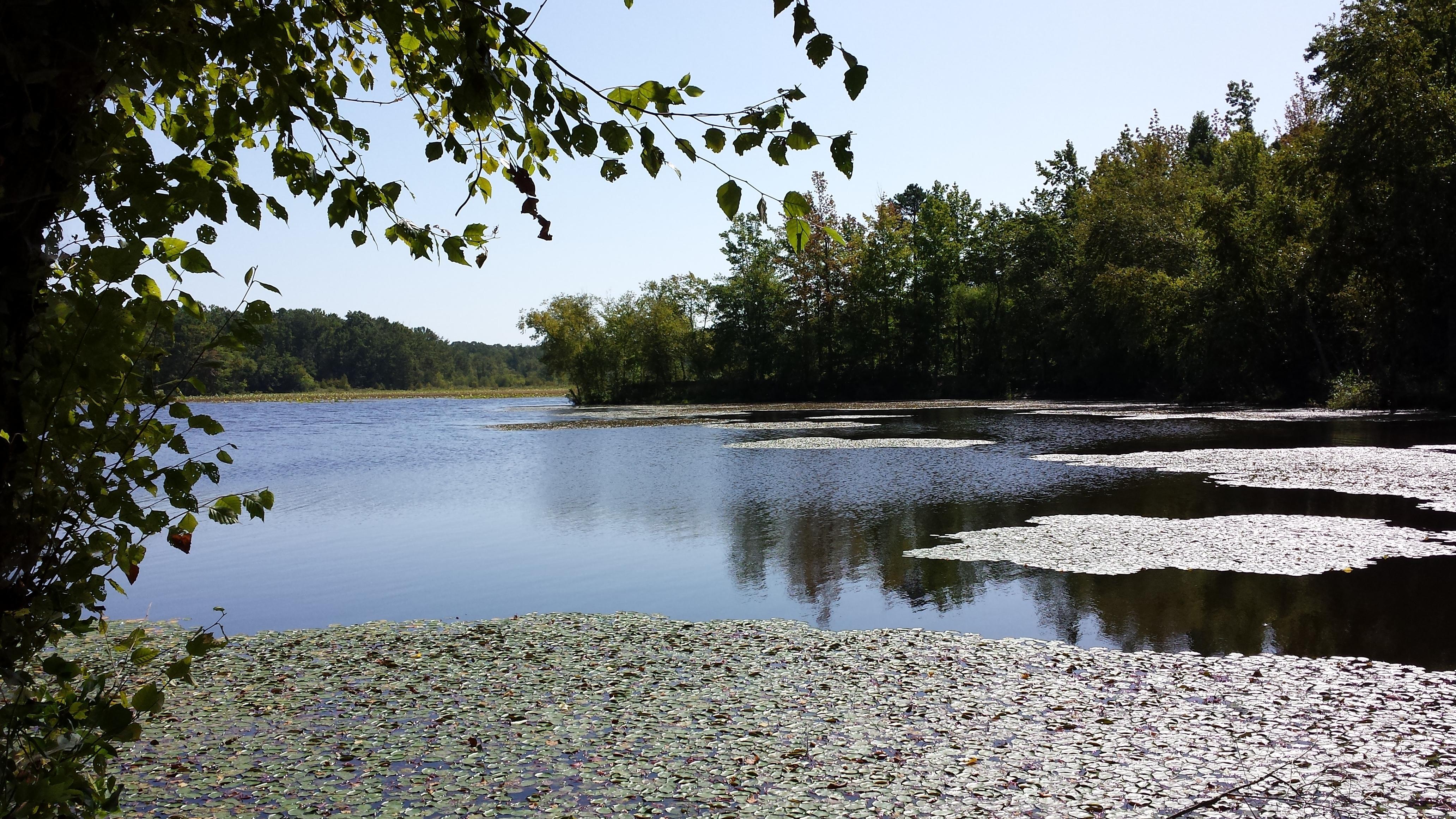 geocaching-petit-jean-state-park