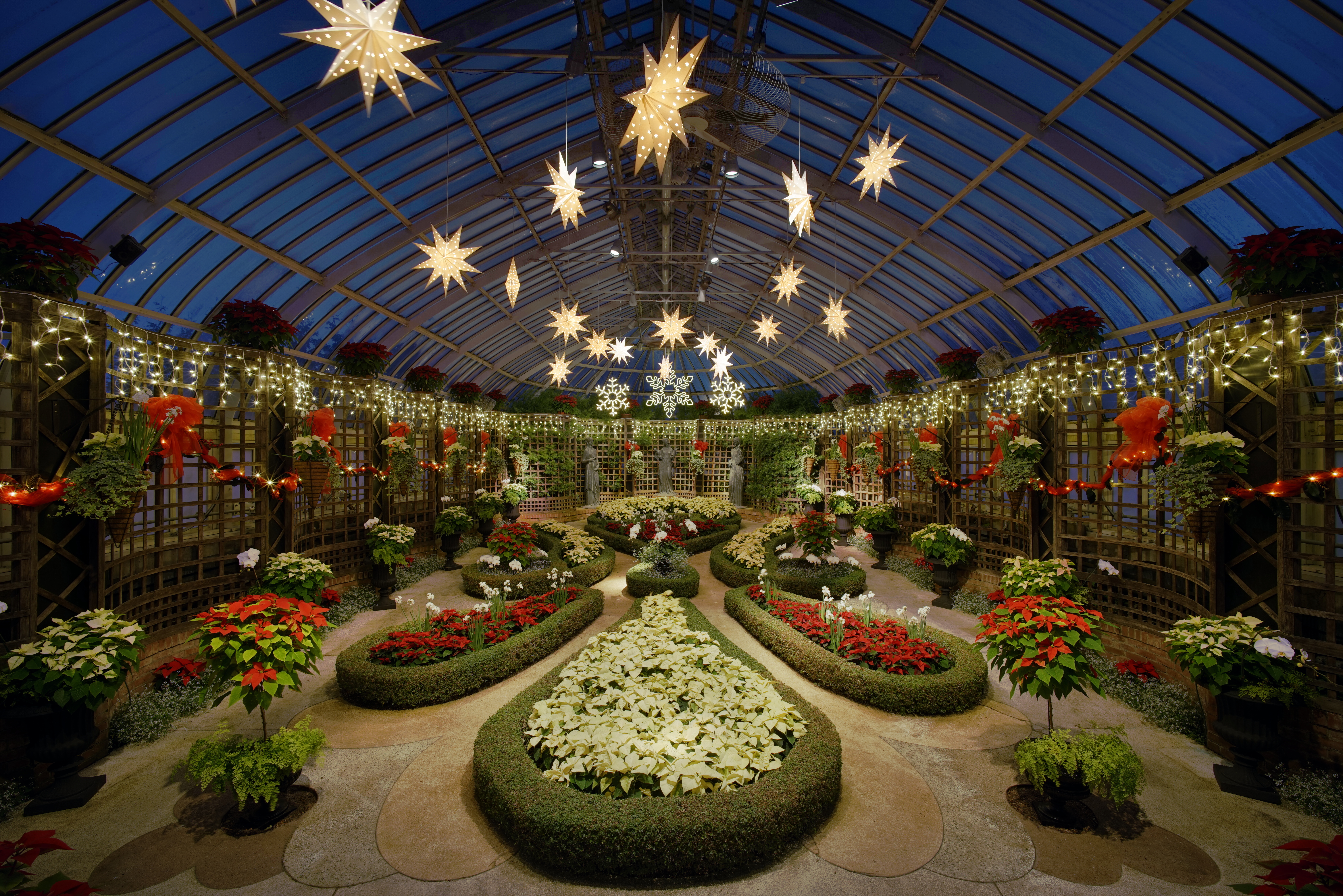 File:Phipps Conservatory winter 2015 Broderie Room.jpg - Wikipedia