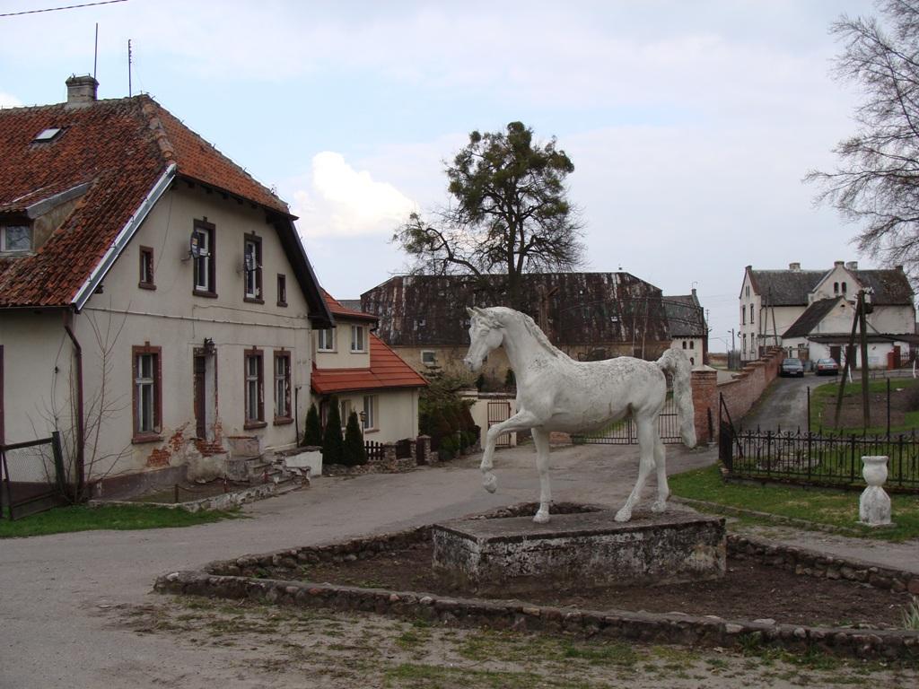 Pomnik_konia_001.JPG