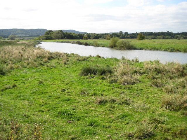 File:River Arun near Amberley - geograph.org.uk - 1508465.jpg