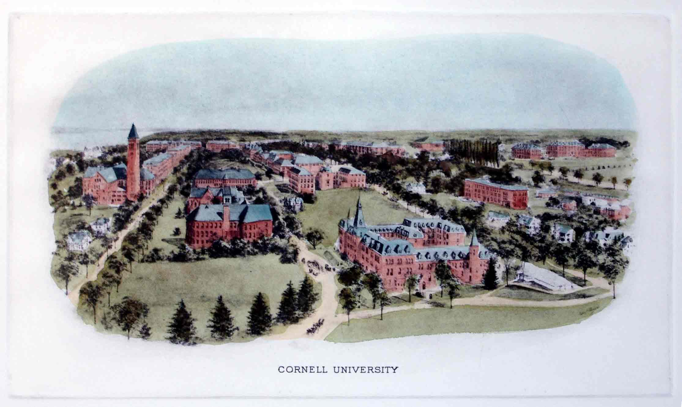 cornell university acceptance rate and admission statistics university arts and sciences essay