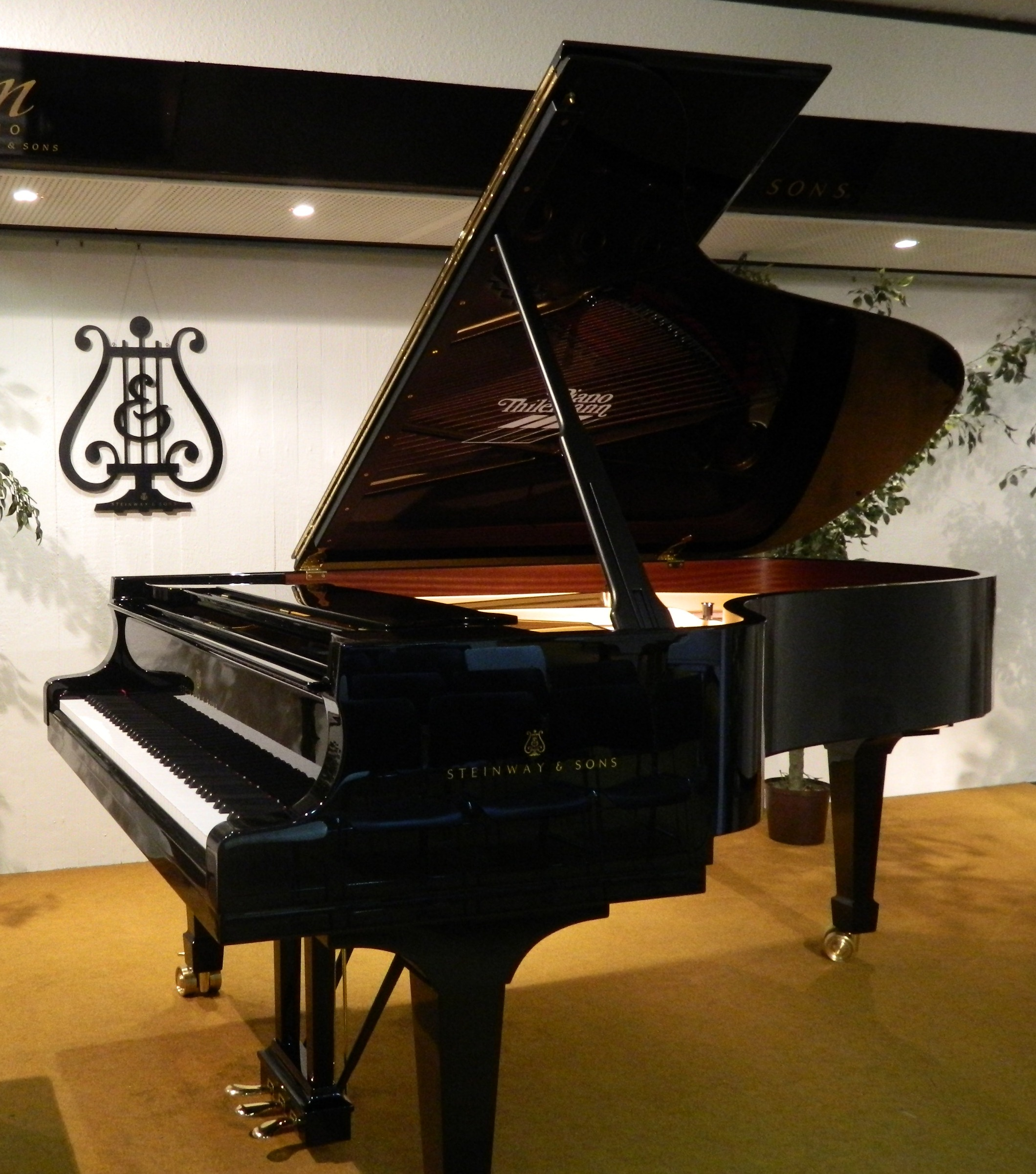File steinway grand piano and wikimedia commons for What size is a grand piano