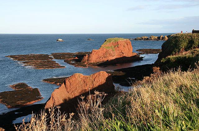 The coastline at Dunbar - geograph.org.uk - 1014326