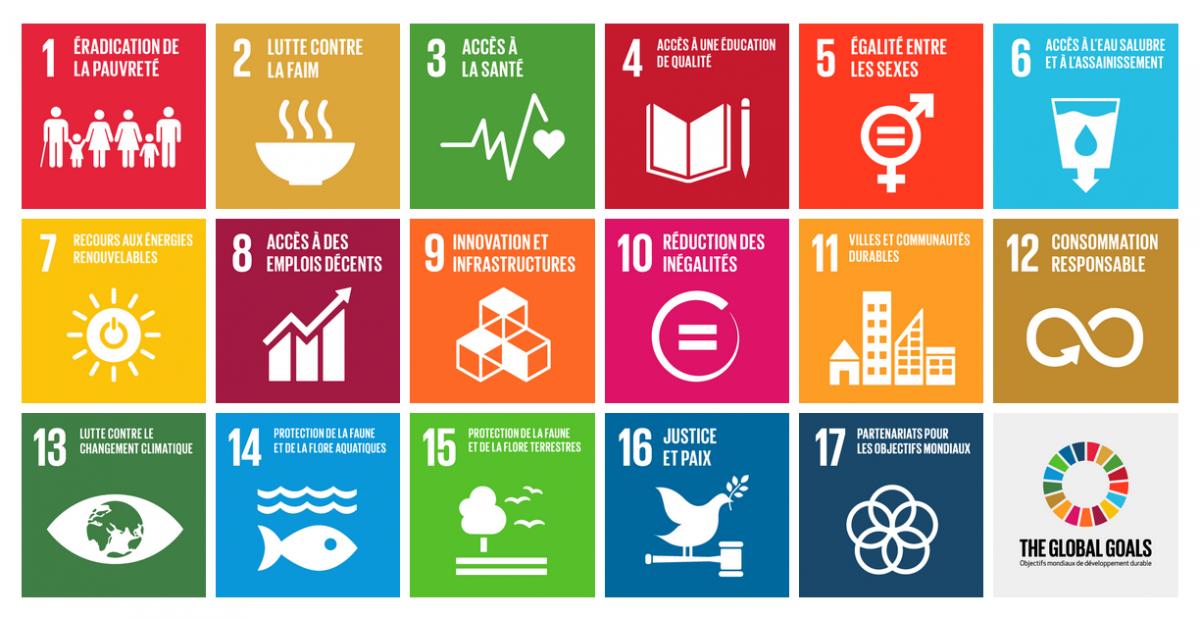 """Résultat de recherche d'images pour """"objectif développement durable"""""""