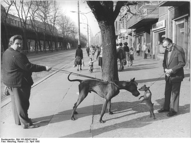 File:Bundesarchiv Bild 183-W0422-0019, Berlin, Straßenszene ...